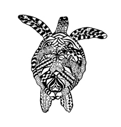 Zentangle stylized turtle sketch for tattoo or t vector