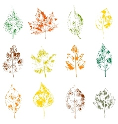 Leaves on white background vector