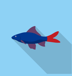 Red tail shark fish icon flat singe aquarium fish vector