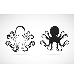 image of an octopus vector image