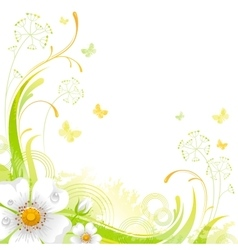 Floral summer background with white wild rose vector