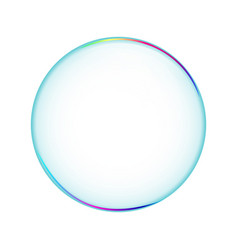 bubble transparent isolated soapbubble in white vector image vector image