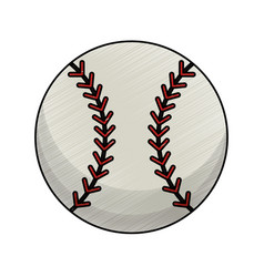 drawing baseball ball equipment vector image vector image