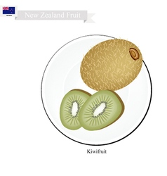 Kiwifruit or chinese gooseberry a popular fruits vector