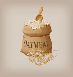 Oatmeal flakes in the bag vector