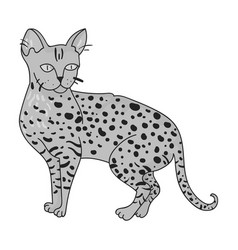 Savannah icon in monochrome style isolated on vector