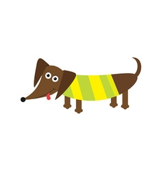Dachshund dog with tongue Striped shirt Cute vector image