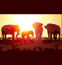 Double exposure animals elephants and kangaroos vector