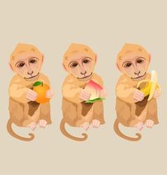 Monkey holding an orange peach and banana vector image vector image
