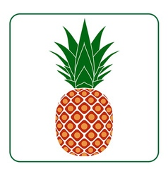 Pineapple with leaf icon Tropical vector image