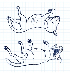 Sketchy dogs vector image vector image