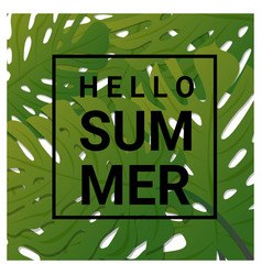 Hello summer background with tropical green leaves vector
