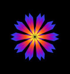 Glowing flower vector
