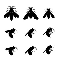 bee icons in silhouette top and side view vector image