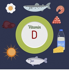 Vitamin D infographic vector image