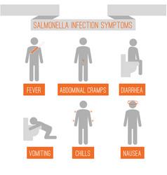 Salmonella infection symptoms vector