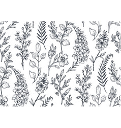 Seamless pattern with hand drawn spring flowers vector