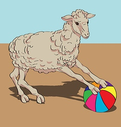 sheep playing the ball vector image vector image