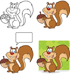 Squirell cartoon vector