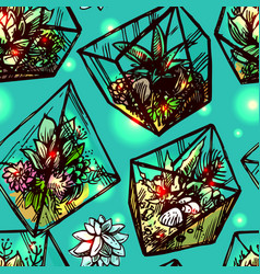 Succulents and cactuses vector