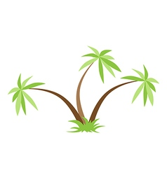 Three palm trees isolated vector