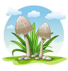 Cartoon mushrooms against white background vector