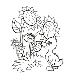 Little cute duckling stands near the sunflowers an vector image vector image