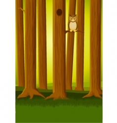 owl in the forest vector image
