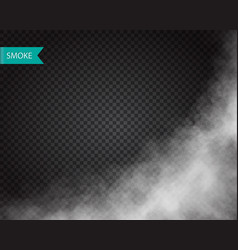 smoke or cloud effect on transparent background vector image