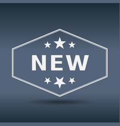 New hexagonal white vintage retro style label vector