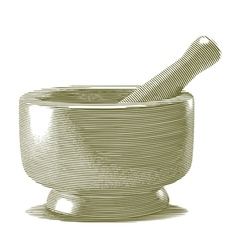 Engraved mortar and pestle vector