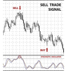 Forex stock chart vector image