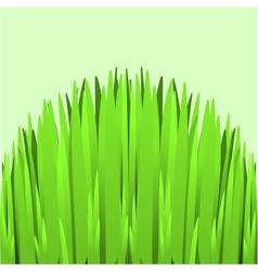 Hill green grass vector