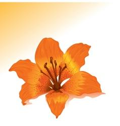 tropical flavor vector image vector image