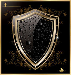 Shield with black water drops vector