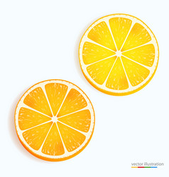 Fresh lemon and orange slice icon on a white vector