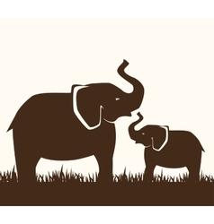 icon elephant design isolated vector image
