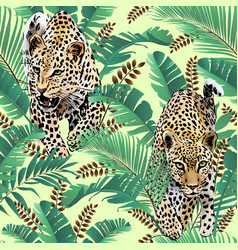 Cheetah and leopards palm leaves tropic vector