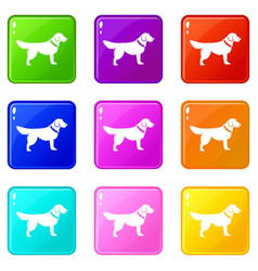dog icons 9 set vector image