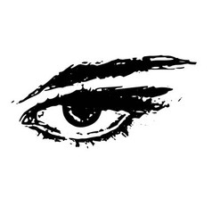 eye on white background vector image