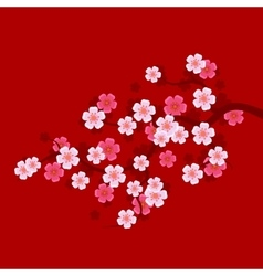 Sakura Branch on Red Background Oriental cherry vector image