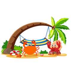 Crab and hermit crab on the beach vector