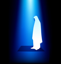 Simple graphic of a muslim woman praying vector