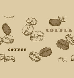 Painted coffee beans sketch drawing vector