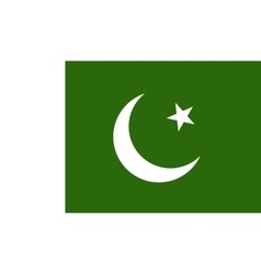 Pakistan flag image vector image