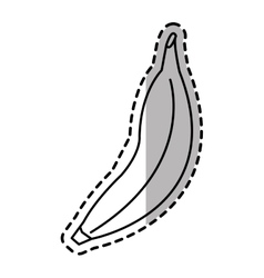 Isolated banana fruit design vector