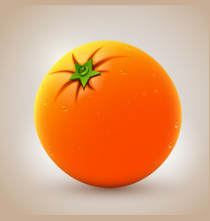 realistic fresh orange with waterdrops vector image vector image