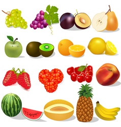 set ripe fruit and berries on white vector image vector image
