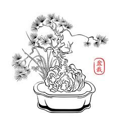 Bonsai art vector image