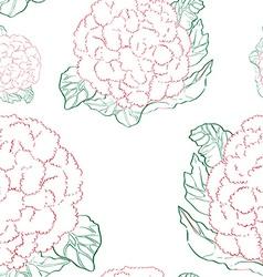 cauliflower pattern vector image
